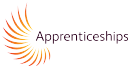 Apprenticeship Assessment Plan submitted to Government